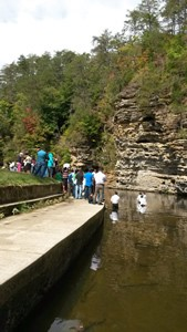 Baptism @ Fall Creek Falls, TN
